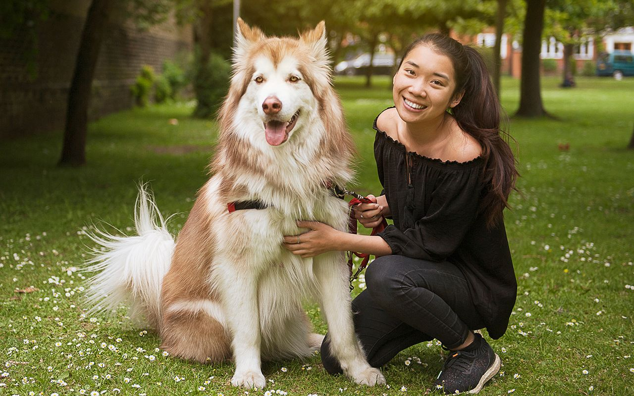 Meet Christina: Product Manager and Alaskan Malamute mum